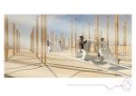 Burning Man Presentation7