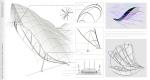 Kite wings details