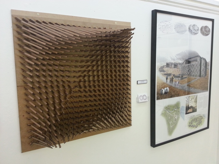 Chris Ingram's Magnetic Field Village