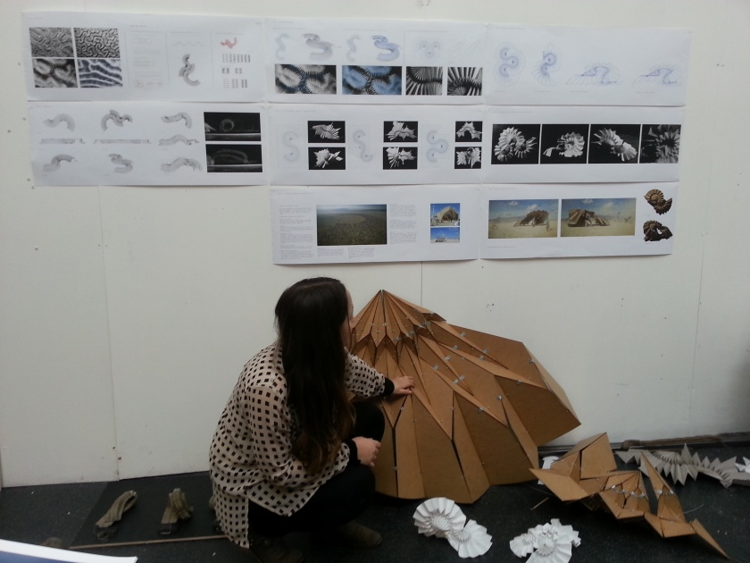 Naomi Danos' Folding roofs.