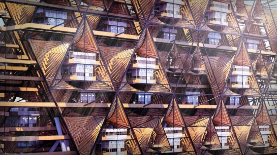 Naomi Danos, The Origami City