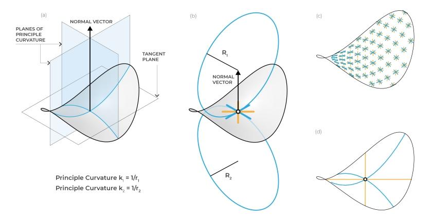 asymptotic curves – WeWantToLearn net