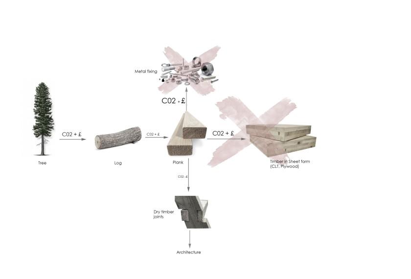timber life cycle.jpg